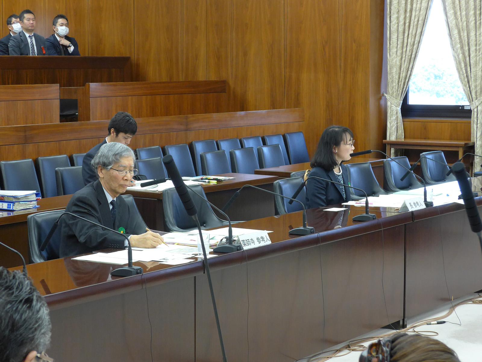 ODA特別委員会と国の統治機構調査会で質問